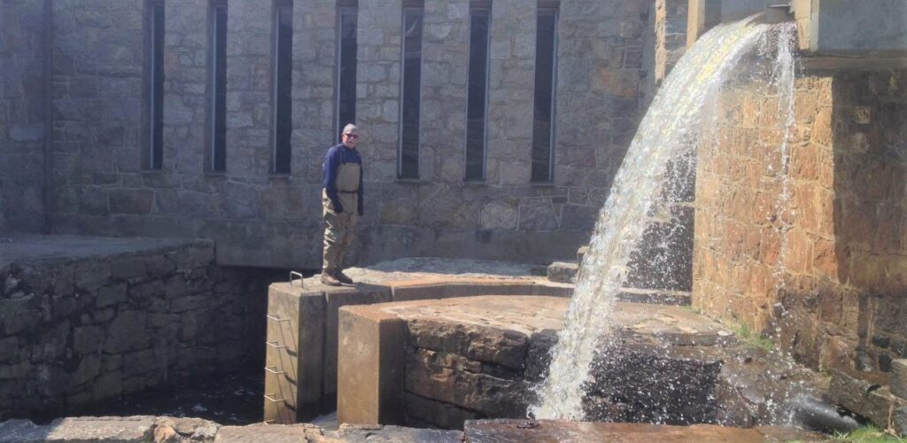 herring hit a dam wall